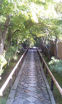 光悦寺の参道