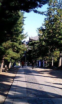 紫野 大徳寺
