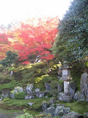 秋の霊鑑寺