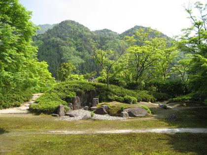 永源寺の新緑