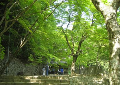 禅と文化の旅_永源寺