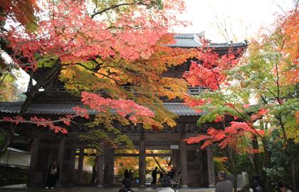 永源寺の三門
