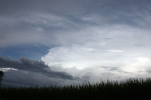 梅雨の空1