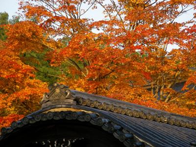 屋根まで真っ赤