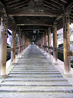 長い回廊の階段