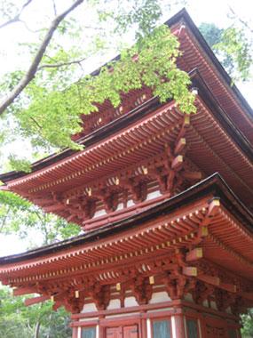 三重塔_浄瑠璃寺
