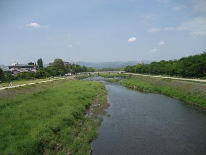 kamo_sinryoku1.jpg