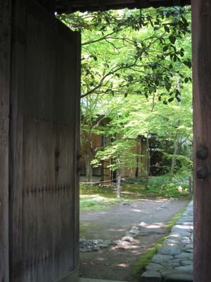 戸を開けると緑の世界