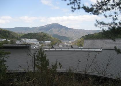 shimizumayuko1.jpg