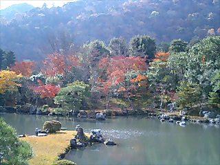 紅葉に染まる曹源池庭園