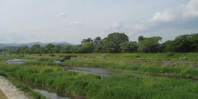 新緑の京都へご一緒に!