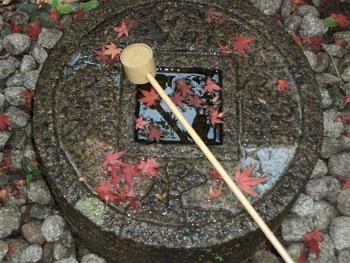 禅と文化の旅_秋